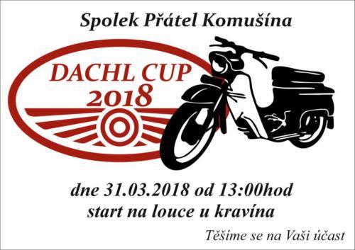 Dachl cup 2018
